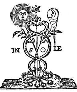 2ª ilustración  caduceus