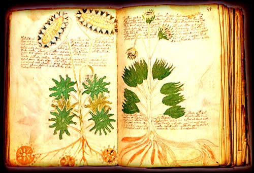 2º el_manuscrito_voynich_1big